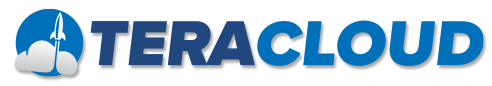 TeraCloud Managed IT Solutions Logo
